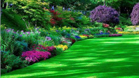 создание сада