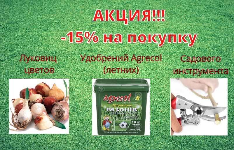 акция -15%